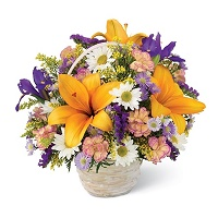 Sunburst Arrangement of mix floral